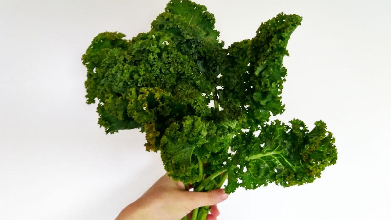 Grünkohl ist ein wahres Superfood! Und er kann so viel mehr als zerkochten Eintopf. Grünkohlchips zum Beispiel.